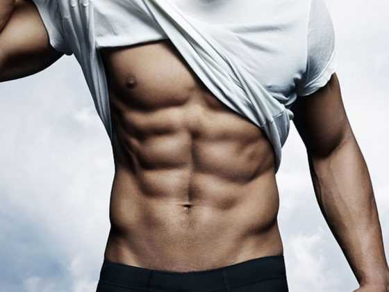 muscle belly